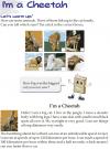 Grade 3 Reading Lesson 23 Nonfiction - I'm A Cheetah