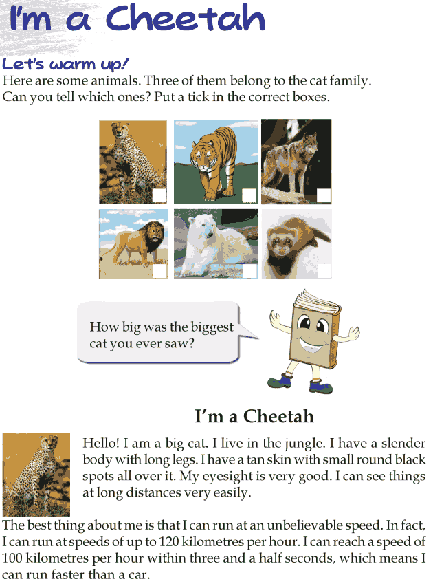 Grade 3 Reading Lesson 23 Nonfiction - Im A Cheetah