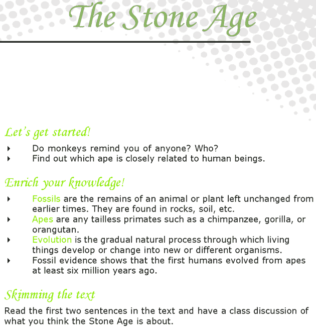 Grade 7 Reading Lesson 20 Nonfiction - The Stone Age