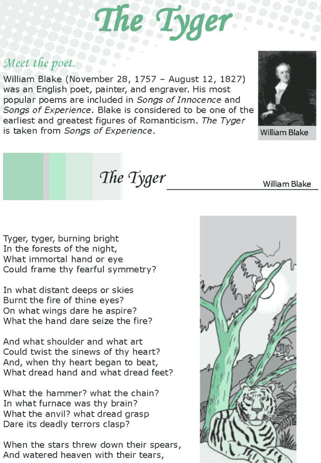 Grade 8 Reading Lesson 17 Poetry - The Tyger