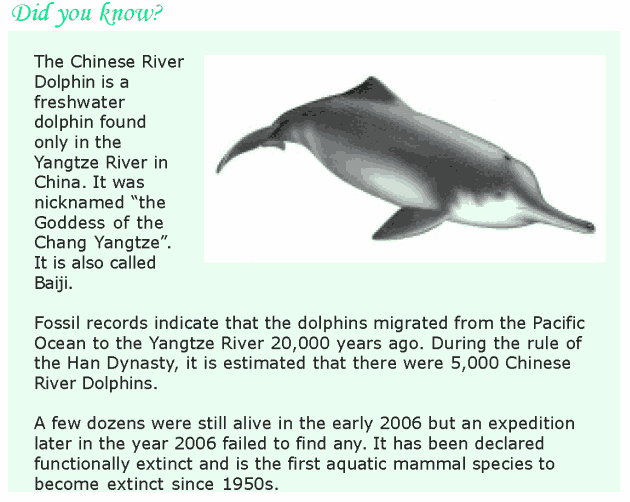 Grade 8 Reading Lesson 6 Nonfiction - Critically Endangered Animals (4)